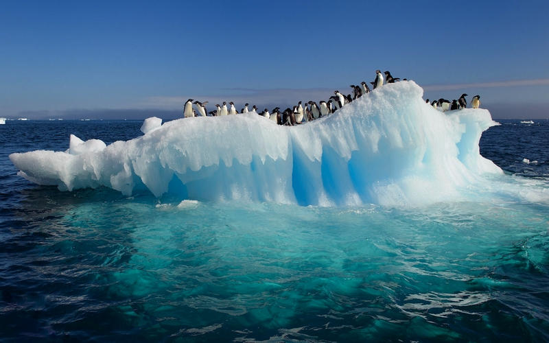 antarctic-ice-shelves-melting